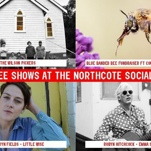 If you're headed to any of our upcoming matinee shows he sure to come in early to grab a bite for lunch!  Bookings recommended and can be a made by emailing functions@northcotesocialclub.com  Show tickets on sale via northcotesocialclub.com  #melbournefood #melbourneeats  #livemusic #northcotesocialclub