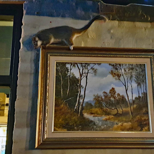 Hey little mate, we're all about the Australiana decor but this might be a bit much.